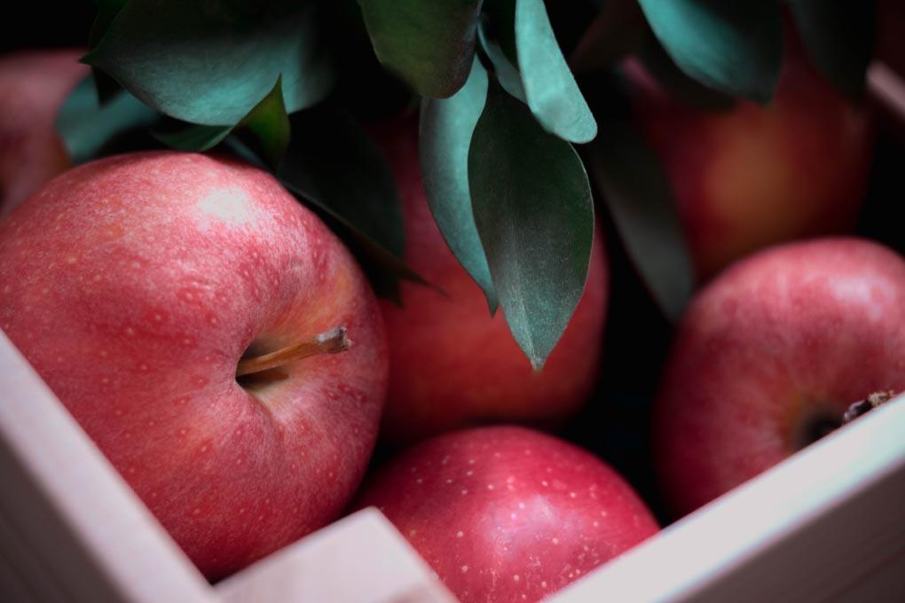 Central Especial Frutas